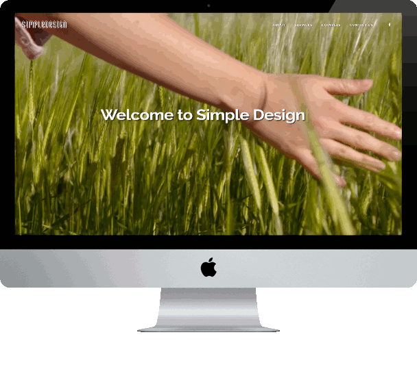 thesimpledesign website design